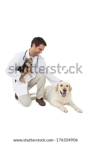 Smiling vet posing with yorkshire terrier and yellow labrador on white background - stock photo