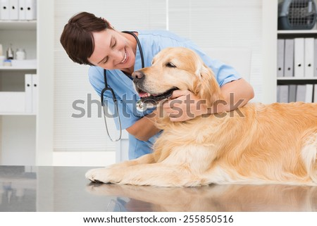 Smiling veterinarian examining a cute dog in medical office - stock photo