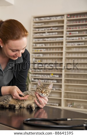 smiling veterinarian examining a domestic cat - stock photo