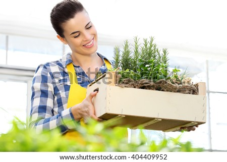 smiling woman holding a crate of aromatic herbs, working in a greenhouse - stock photo
