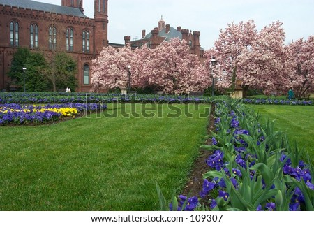 Smithsonian flower bed - stock photo