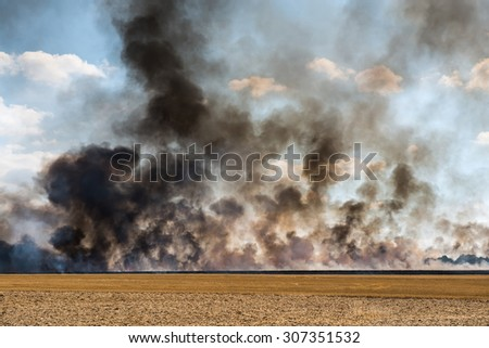 smoke in an harvested field catching fire - stock photo