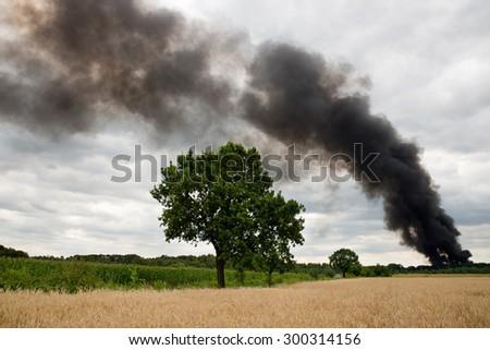 Smoke over a field - stock photo