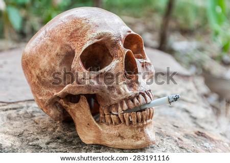 Smoking human scull - stock photo