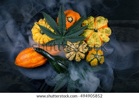 Smoky harvest or Thanksgiving background with autumnal squash, gourds and cannabis leaf on black wood background