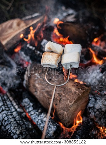 smores over a fire