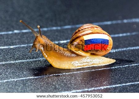 Snail under Russian flag on sports track moves to finish line - stock photo