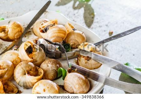 snails as gourmet food - stock photo