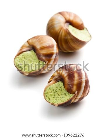 snails with butter and parsley on white background