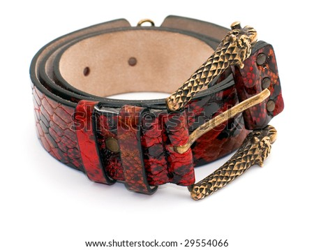 Snake leather belt - stock photo