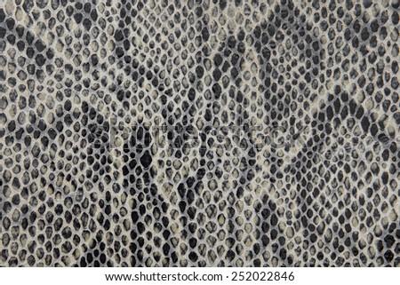 snake leather texture - stock photo