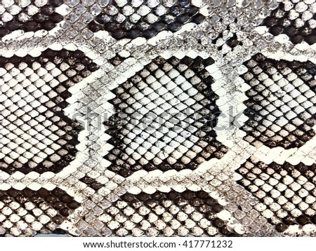 Snake skin, abstract texture background. - stock photo