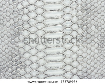 Snake skin closeup pattern for background - stock photo