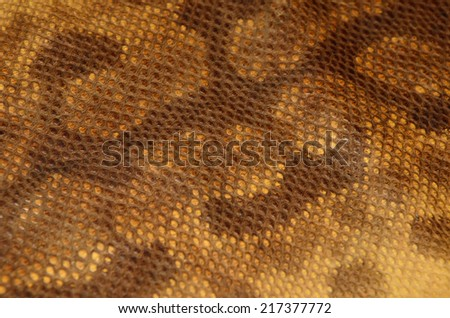 Snake skin leather texture - stock photo