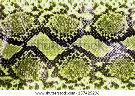 Snake skin pattern background - stock photo