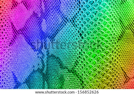 Snake skin pattern use for background in rainbow color. skin background, snake texture, snake skin background,  - stock photo