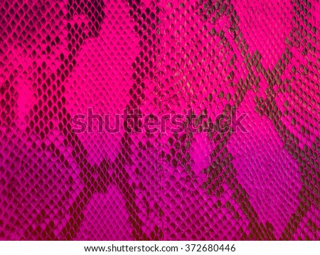snake skin with the pattern - stock photo