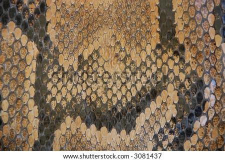 snake texture detail - stock photo