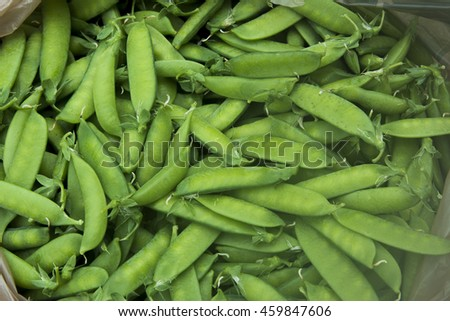 Snap Peas in Pods