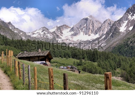 Snow-capped summits of the Oetztal Alps in South Tyrol, Italy. Alpine hut in the Pfossental, flower meadows, blue sky and white clouds Snow-capped summits - stock photo