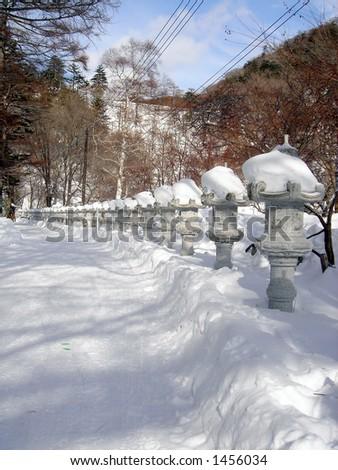 Snow capped toro - stock photo