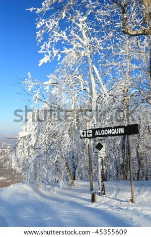 Snow clad trees at the top of Algonquin ski trail at Belleayre Mountain Ski Resort in the Catskills Mountains of New York - stock photo