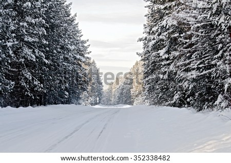 Snow-covered asphalt road, spruce and pine on a roadside on the background of the winter sky - stock photo