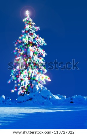 Snow covered Christmas tree outside at night. - stock photo