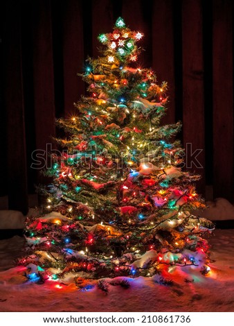 multi colored christmas trees stock images royalty free images vectors shutterstock. Black Bedroom Furniture Sets. Home Design Ideas