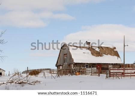 Snow Covered Derelict Barn in Alberta Canada - stock photo