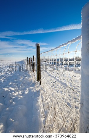 snow covered fence in the morning sun