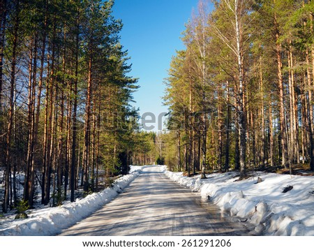 Snow-covered forest road in spring - stock photo