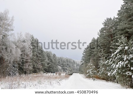 Snow-covered forest road, winter landscape - stock photo