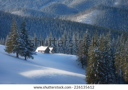 Snow-covered hut. Winter in the mountain forest sunny day. Christmas landscape. Carpathians, Ukraine, Europe - stock photo