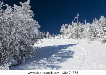 Snow covered pine trees and ski trails at Stowe Mountain Resort, Stowe, Vermont, USA - stock photo