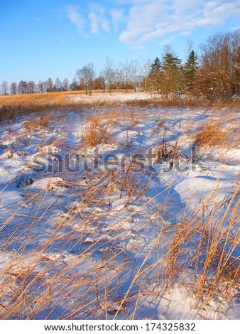 Snow covered prairie scene at Allerton Park in central Illinois - stock photo