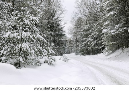 Snow Covered Road - stock photo