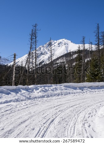 Snow-covered road in the mountains - stock photo