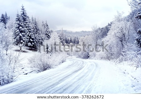 Snow-covered road winding among winter forest