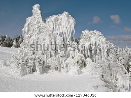 Snow covered trees in a geyser basin in Yellowstone National Park. - stock photo