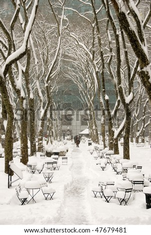 Snow covered trees in Bryant Park - stock photo