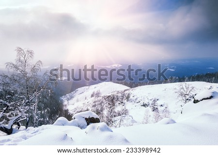 Snow covered trees in the mountains at sunset. Beautiful winter landscape.