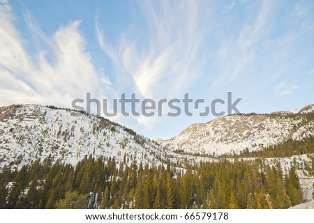 Snow covering mountain with tree in the foreground in winter time - stock photo
