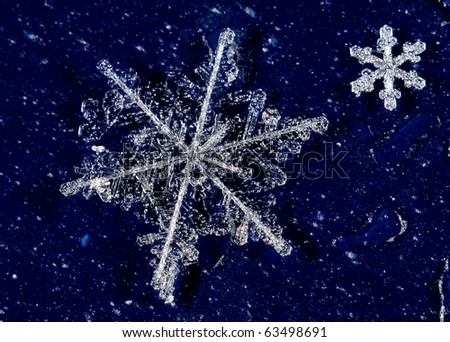 Snow crystals from a cold winter - stock photo