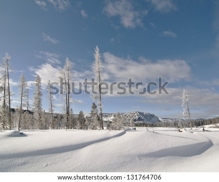 Snow drift landscape in Yellowstone National Park - stock photo