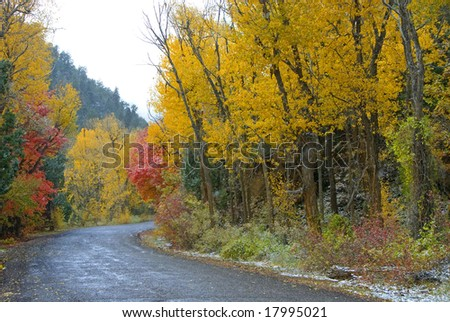 Snow falling in autumn time - stock photo