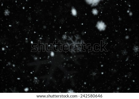 Snow falling on dark winter night. Snowflakes bokeh effect abstract blur.