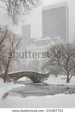 Snow falling on the Pond's frozen surface and Gapstow Bridge, and turning Central Park and Manhattan quiet. New York skyscrapers are fading away with the snow falling on the city.