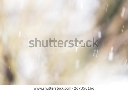 Snow falling with bokeh background - stock photo