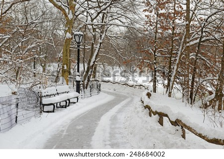Snow in Central Park, Manhattan, New York - stock photo